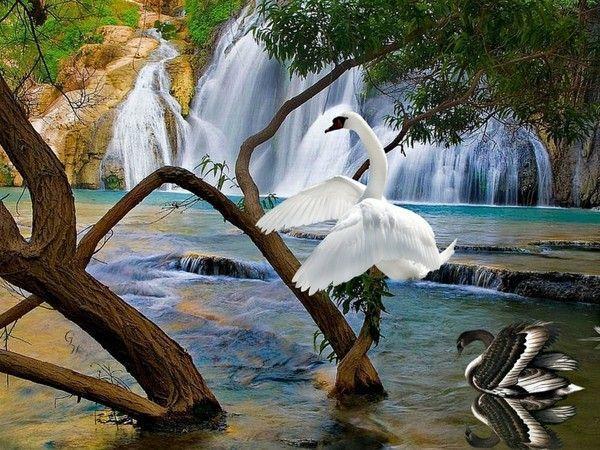 Image du Blog pupuce67.centerblog.net